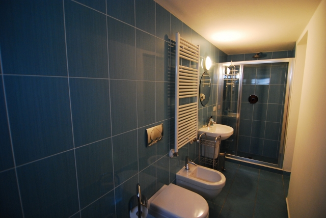lower ground floor shower room